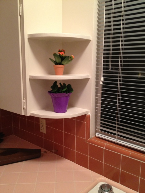 Little shelves, perfect for adorable potted plants