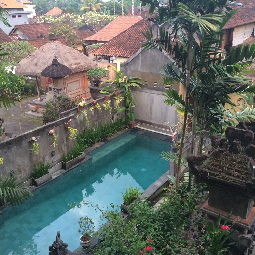 Vacation Part Four: Mandala Magic Retreat in Ubud (2/6)